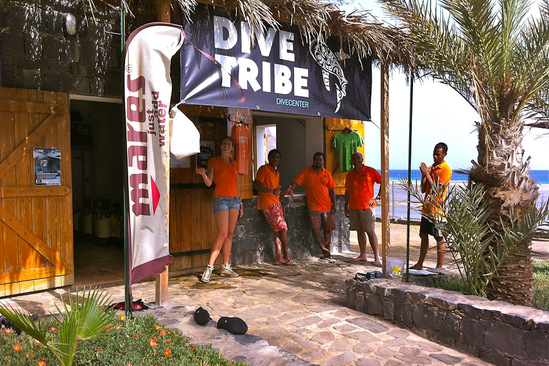 © copyright by Dive Tribe Sao Vicente